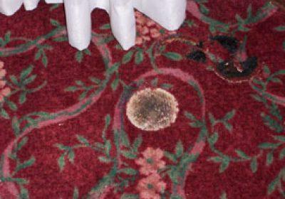 Carpet Burn Removed