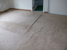 carpet needing re-stretching